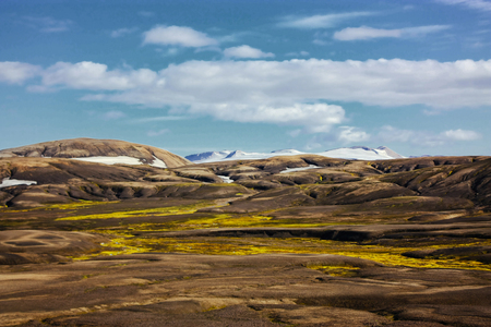 National park and mountains with moss in Iceland
