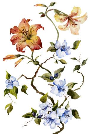 Orange lis tigrés et fleurs bleues sur le fond blanc. La peinture à l'aquarelle.