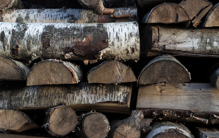 stack of firewood: Fragment of birch and pine firewood stack