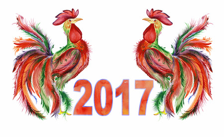 disposed: Two roosters disposed symmetrically and the sign 2017 on white background. Watercolor painting, handmade. Cock as a symbol of the year. Can be used for greeting cards and calendars.