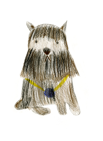 Black and brown dog (Miniature Schnauzer) with medal on white background. Hand drawn. Childrens pencil drawing simulation. Stock Photo