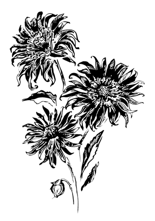 Vector illustration with three black flowers on white background. Can be used for fabric, cloth printing, wrapping paper, wallpaper Stock Photo