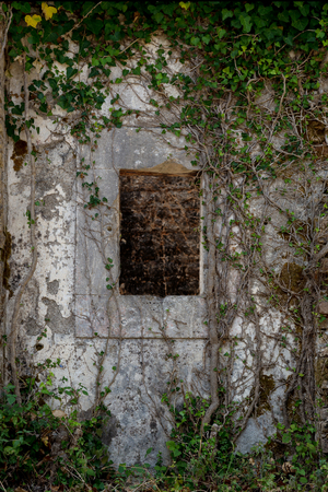 interweave: Ancient stone wall with window and old ivy climbing on it. Abandoned mysterious place. The picture was taken in neglected medieval fortress in Montenegro.