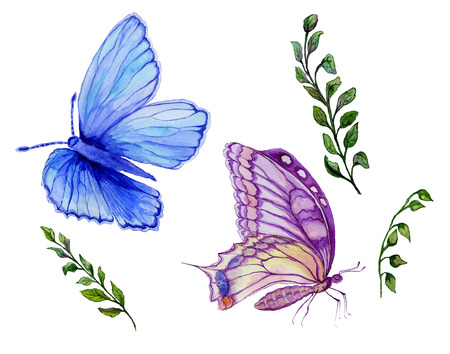 Watercolor painting set. Beautiful blue and purple butterflies, green twigs with small leaves. Isolated on white background. Hand drawn and painted natural illustration.