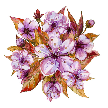 Beautiful bunch of fruit tree flowers. Spring flourish illustration. Isolated on white background. Watercolor painting. Hand drawn and painted. Top view.