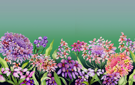 Colorful summer wide banner. Vivid iberis flowers with green leaves on gradient green background. Horizontal template. Seamless panoramic floral pattern. Watercolor painting. Hand painted illustration Stock Photo