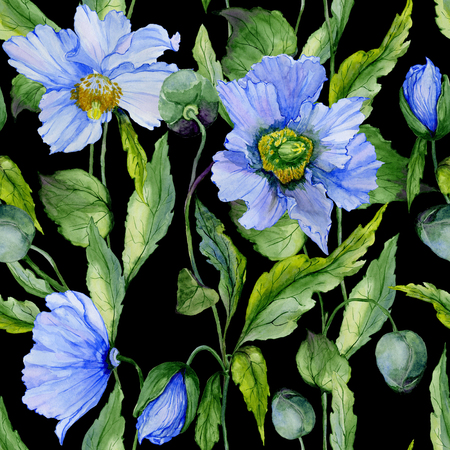 Beautiful blue poppy flowers with green leaves on black background. Seamless floral pattern. Watercolor painting. Hand painted illustration. Fabric, wallpaper, wrapping paper design. Stock Photo