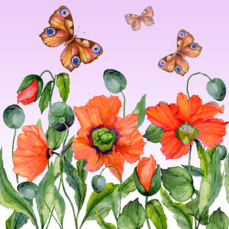 Vivid summer background. Beautiful red poppy flowers and flying butterflies on pink background. Square shape. Seamless floral pattern. Watercolor painting. Hand painted illustration.