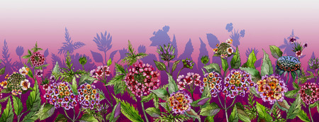 Colorful summer wide banner. Beautiful lantana flowers with green leaves on pink background. Horizontal template. Seamless panoramic floral pattern. Watercolor painting. Stock Photo