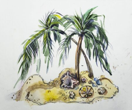 Two palm trees on the sand among the shells on a white background. Hand-painted illustration