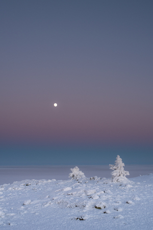 Cold winter evening, moon in the sky