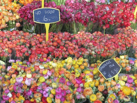 Flower market - symbol of Amsterdam, Holland photo