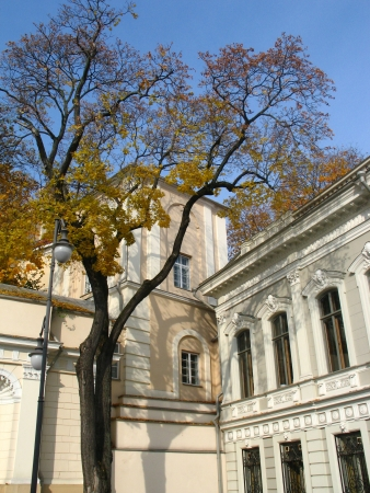 classicism: Classicism style palace and autumn tree in Vilnius,  Lithuania Editorial