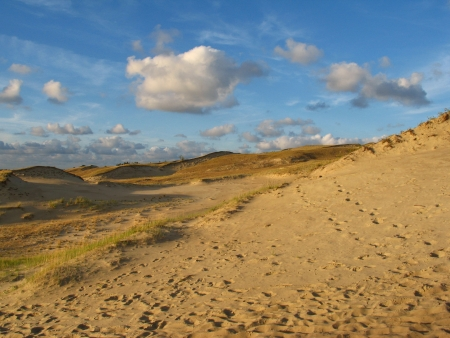 desertification: Dunes in Neringa, Lithuania near Baltic sea
