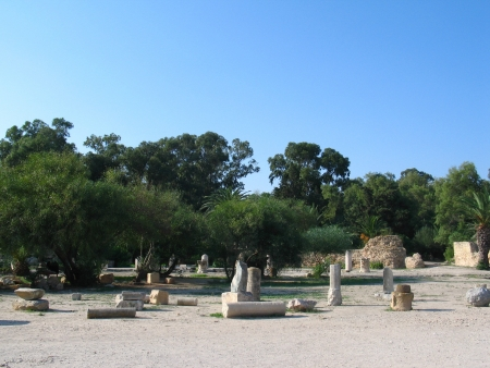 General view of roman ruins in Carthage, Tunisia photo