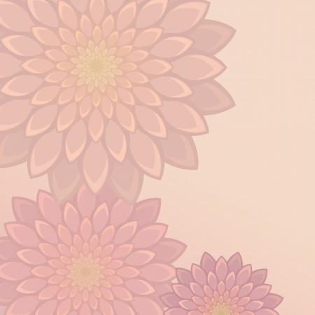 aster: flower texture