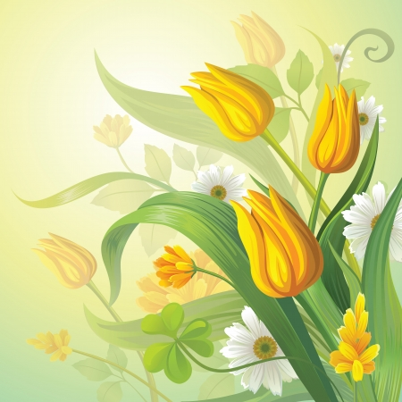 tulips in green grass: yellow tulips Illustration