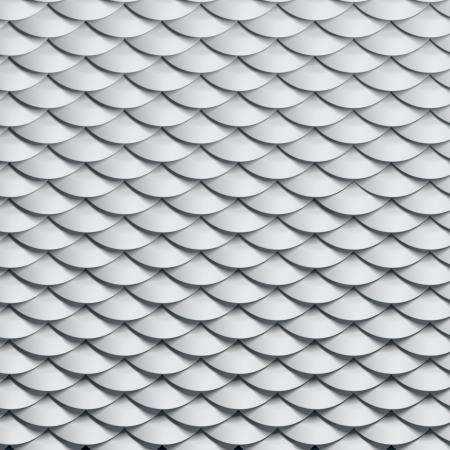 scales snake background photo