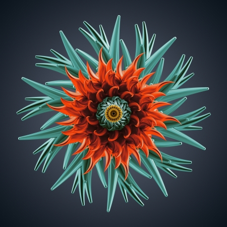3d abstract organic flower coral star shape photo