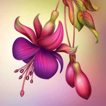 abstract floral: creative illustration of fuchsia flower with green leaves isolated