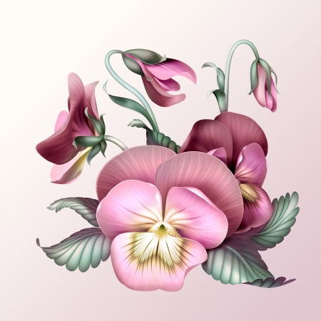 violas: bunch of vintage pink pansy flowers, illustration