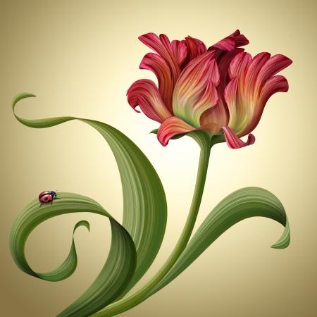 무당 벌레와 아름 다운 빨간 튤립 꽃의 그림 스톡 콘텐츠