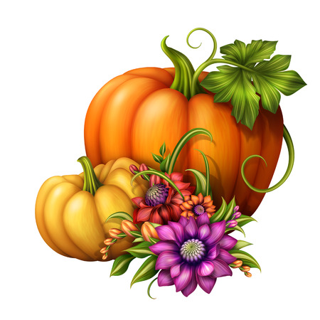 traditional seasonal decoration with pumpkins and flowers isolated on white background photo