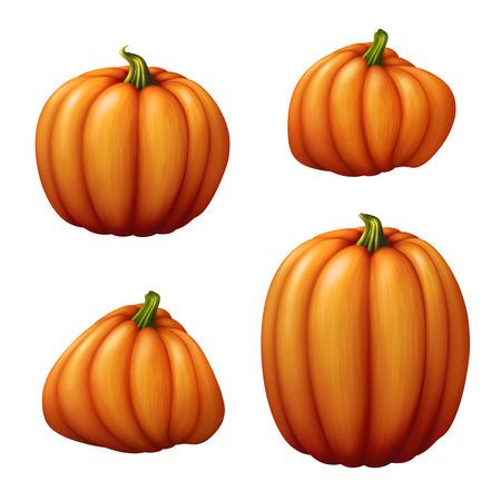 set of assorted shapes pumpkins illustration, vegetables isolated on white background illustration