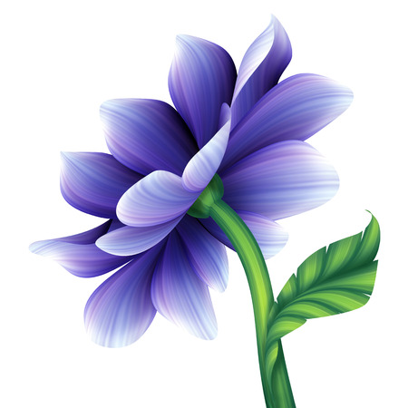 violet flowers: abstract blue violet creative flower isolated on white background