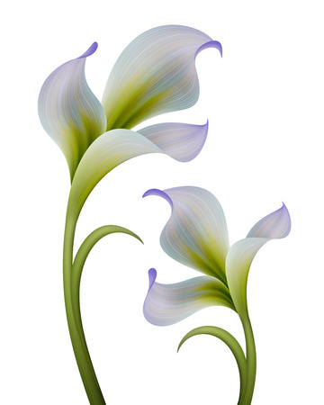 abstract flowers illustration isolated on white