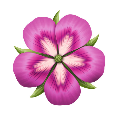 clipart: abstract pink flower illustration isolated on white