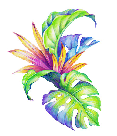 tropical forest: abstract tropical leaves and flowers, watercolor illustration Stock Photo