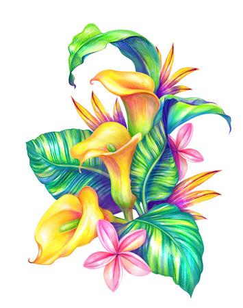 抽象的な熱帯の葉と花、水彩イラスト 写真素材