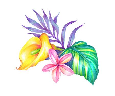 추상적 인 열대 나뭇잎과 꽃, 수채화 그림 스톡 콘텐츠