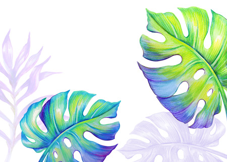 tropical leaves background, jungle plants, watercolor illustration
