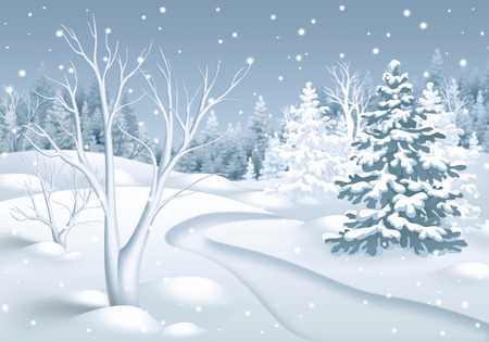 footpath: winter landscape illustration, footpath in snowy forest, nature background
