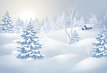 panorama view: winter countryside view, Christmas tree in snowy forest, rural landscape panorama