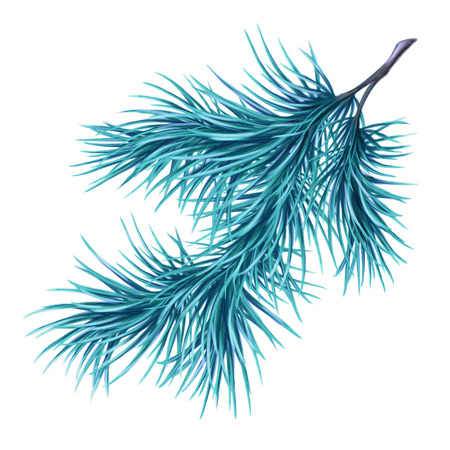 branch isolated: Christmas pine branch, watercolor illustration isolated on white background