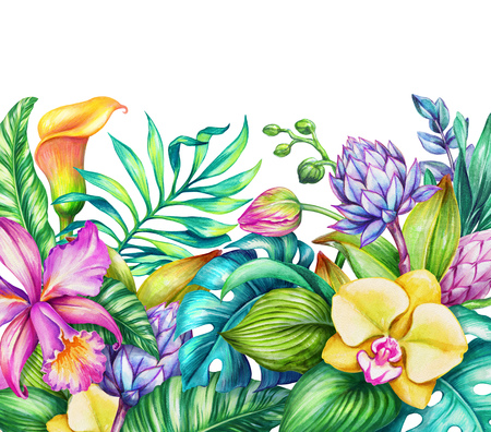 flower  hand: watercolor floral illustration, paradise nature, tropical flowers frame, orchid, hibiscus, calla lily, green palm leaves, wild jungle background