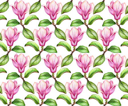 watercolor illustration, magnolia seamless pattern, floral background, botanical wallpaper
