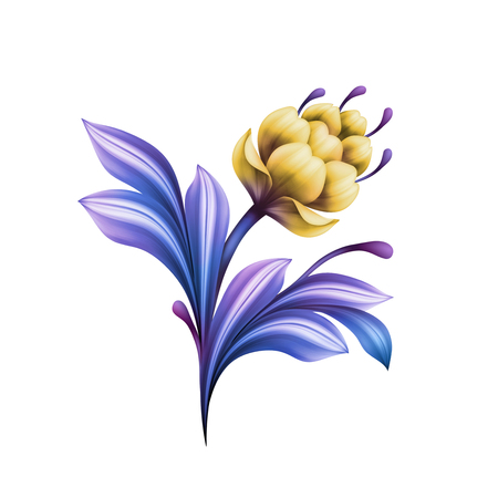 abstract flower, botanical illustration, decorative tulip, lily, curly leaves, vintage acanthus, clip art element isolated on white background Stock Photo