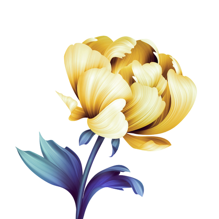 abstract flower, botanical illustration, decorative peony, curly leaves, clip art element isolated on white background
