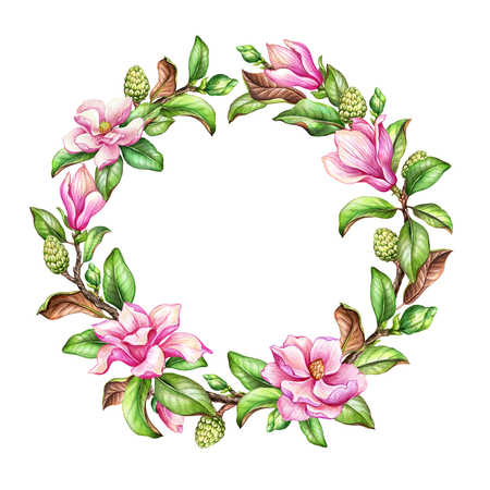 decoration: watercolor botanical illustration, magnolia flowers, green leaves, spring nature, floral wreath, round frame, isolated on white background Stock Photo