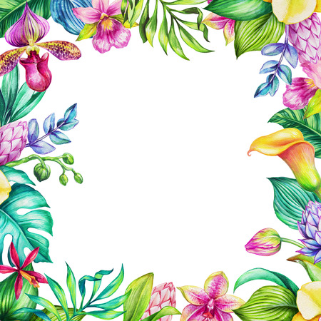 watercolor illustration, tropical flowers, jungle leaves, floral frame