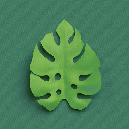 layered: 3d render, paper cut decor, green tropical leaf, isolated botanical clip art element