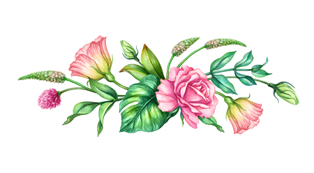 watercolor botanical illustration, pink rose flowers, tropical green leaves, floral bouquet, border, isolated on white background Zdjęcie Seryjne - 83534909