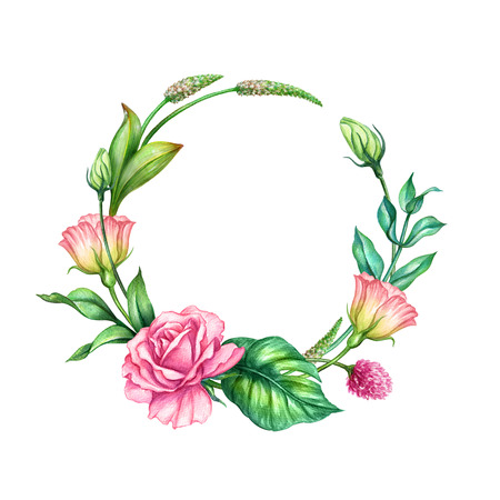 watercolor botanical illustration, pink rose flowers, tropical green leaves, floral wreath, round frame, blank banner, isolated on white background