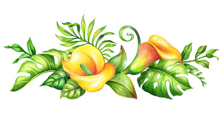 watercolor botanical illustration, wild yellow tropical flowers, jungle green leaves, calla lily, floral border, isolated on white background