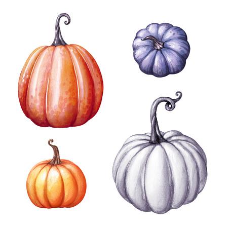Aquarel illustratie, herfst pompoenen instellen, vallen, Halloween of Thanksgiving illustraties geïsoleerd op een witte achtergrond