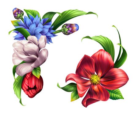 botanical illustration, wild flowers bouquet, floral corner design elements, clip art isolated on white background